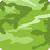 Verde Amazon